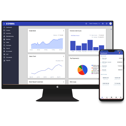 Accounting and Billing Software in lucknow